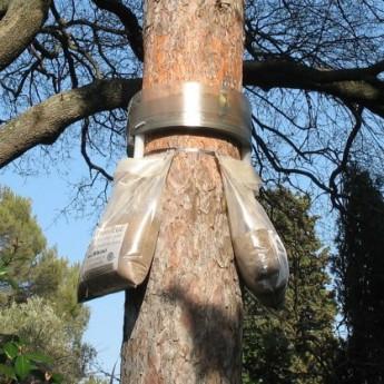 ECOPIEGE TUBE DE DESCENTE POUR 10 NIDS DE CHENILLES PROCESSIONNAIRES