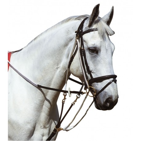 GOGUE NORTON POUR CHEVAL